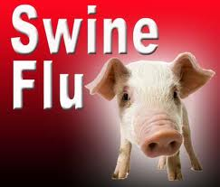 Why is it called the Swine Flu?