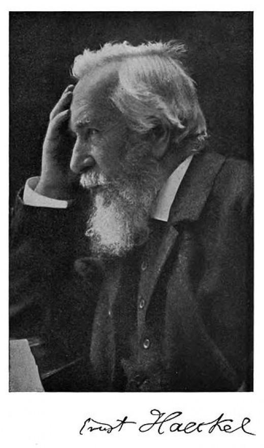Ernst Haeckel (1834-1919).