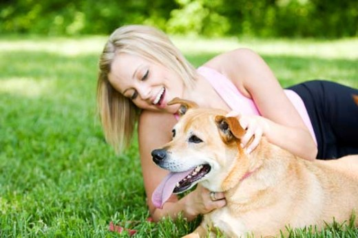 The more well behaved your dog, the happier you are.