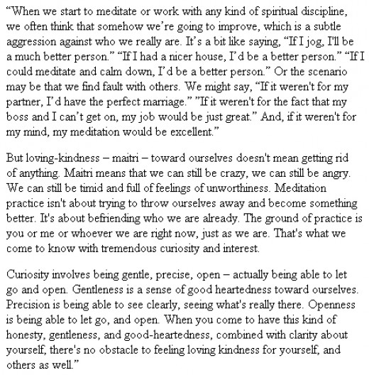 When Things Fall Apart: Heart Advice for Difficult Times (Shambhala Classics) by Pema Chödrön