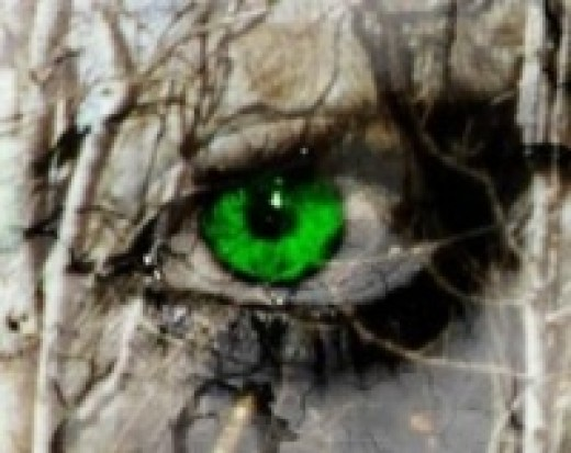 """The green eyed monster"""