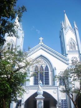 The Immaculate Conception Parish