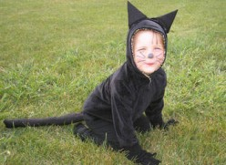 Homemade Cat Costume