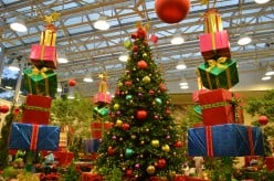 Christmas at the Missouri Botanical Garden and Butterfly House
