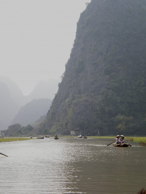 Full view of the Ngo Dong River, rice paddies and rock formations present in Tam Coc Vietnam.
