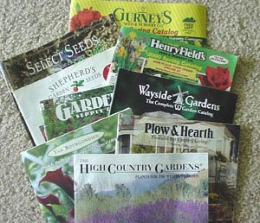 Selection of gardening catalogs
