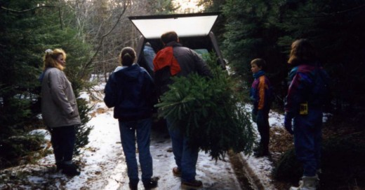 Cutting Christmas trees with the cousins,1994