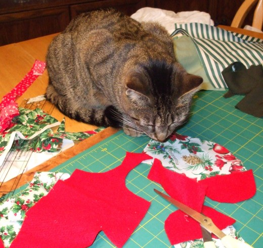 My cat, Skeeter, supervises the creation of his special Christmas stocking.