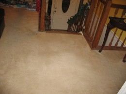 Carpet After Using the Oreck XL