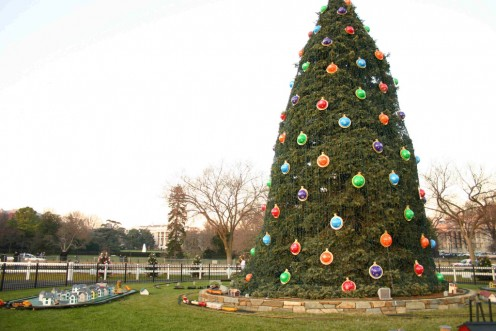 A 2006 photo of the National Christmas Tree