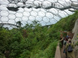 The walkway high up in the biome for looking down on the forest canopy. Not recommended if you have vertigo.