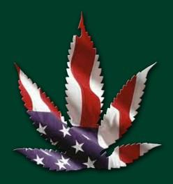Medical Marijuana Mystery!