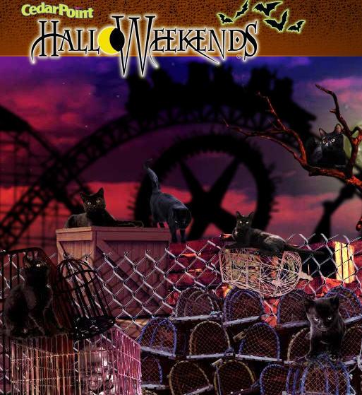 HalloWeekends attractions