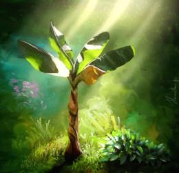 'Banana Tree'