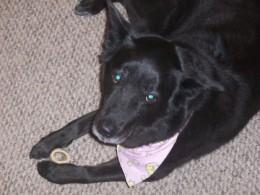 Sephi loved her bones.