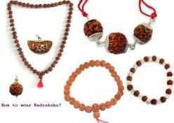 How to wear Rudraksha Beads Mala? Procedure and Rituals for wearing Rudraksh rosary