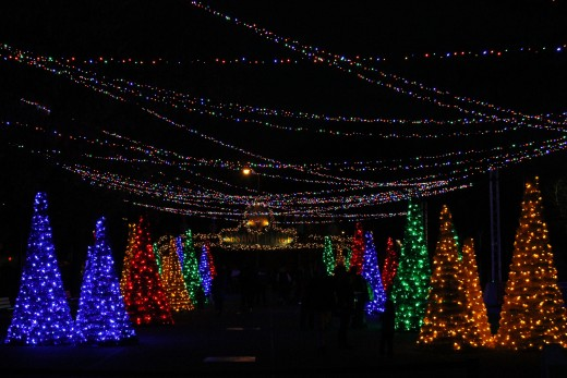 Holiday lights at Sesame Place