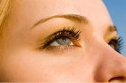 How to know the difference between an eyebrow wax and eyebrow design