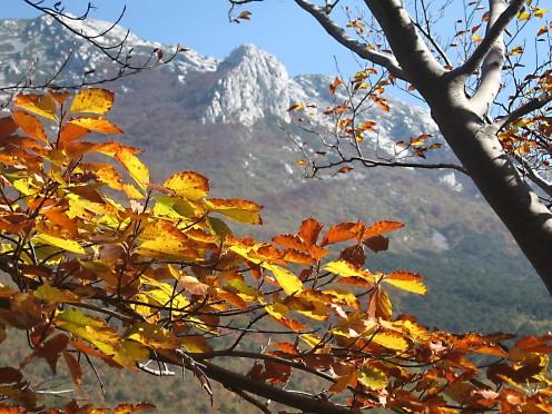NP Paklenica, Velebit