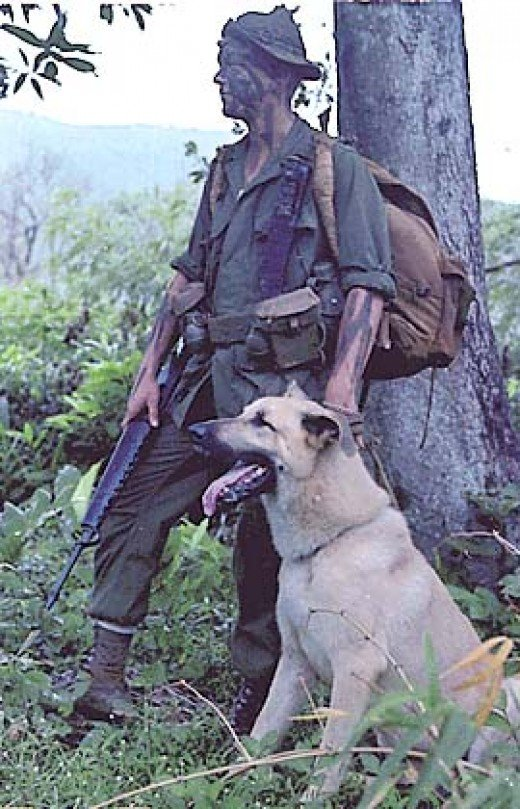 Lance Corporal Ralph H. McWilliams and his scout dog Major, Vietnam, November 1967.