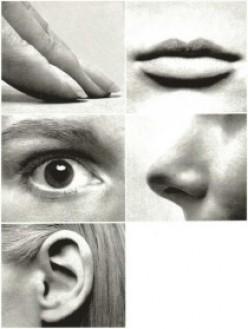 Senses = Inspirations