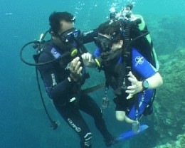 All divers are created equal(ized) - it's just that some of us handle the pressure better.