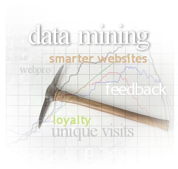 Data mining helps bring more unique visitors