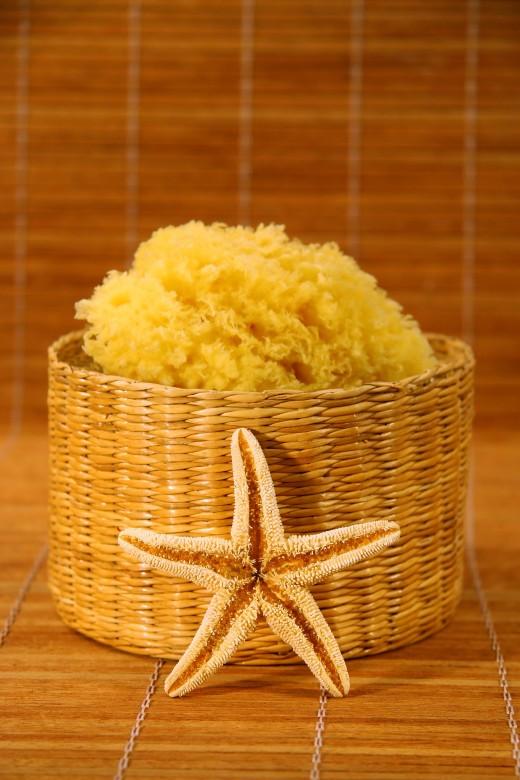 Sea sponge and starfish on bamboo mat
