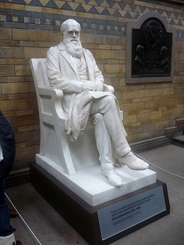 Charles Darwin Statue at the Natural History Museum, London. Source: Paul 8032 CC BY 2.0 via flickr creative commons