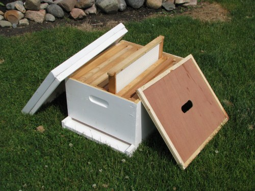 Traditional Bee Hive