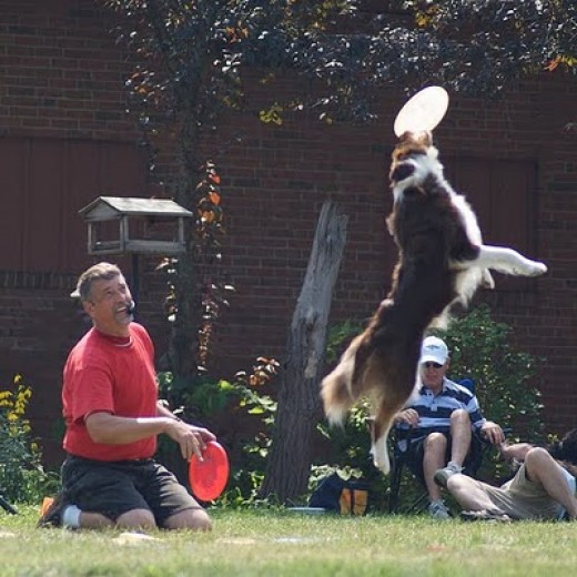 This is cool to watch. The Frisbee can't touch the ground and the trick is to do all kinds of stunts!