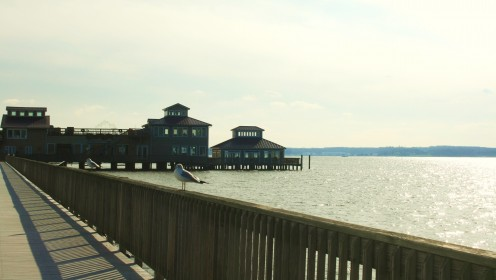 Solomon's Island offers beautiful views of the bay.