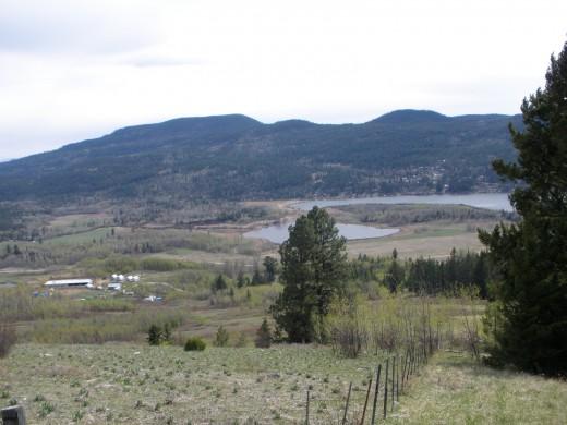 Hills and Lakes near Kamloops