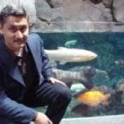 Bivash Sarker profile image