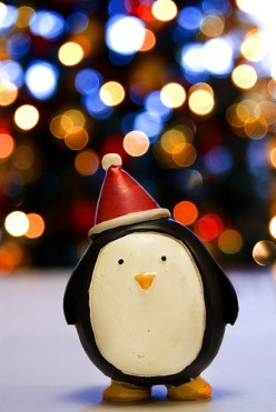 Five Easy Ways to Give Back to Your Community This Christmas