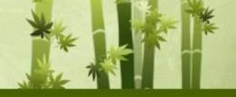 Yahoo's Bamboo Marijuana, or BM, theme.