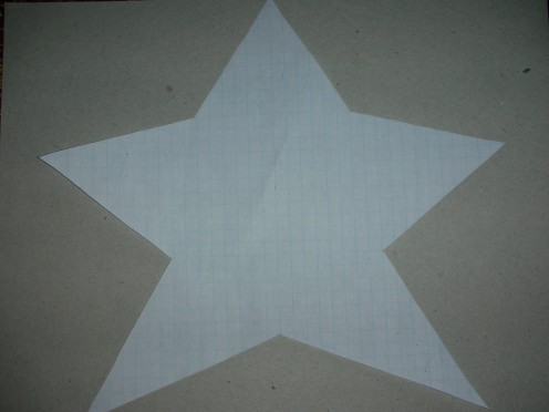 Figure 2. Resized template made from graph paper