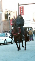 Ride Your Horse in a Parade