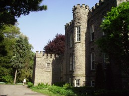 Curious, I ventured down the side of the castle, intending to discover what lay in the back.