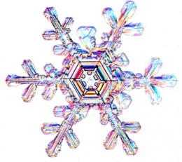 A digital snowflake for scrapbooking.
