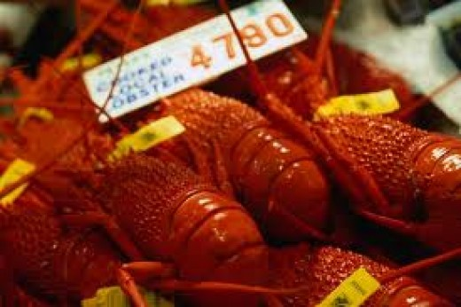 lobsters @ Sydney Fish Market