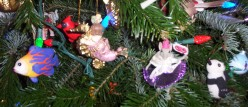A New Christmas Tradition to Enjoy with Children