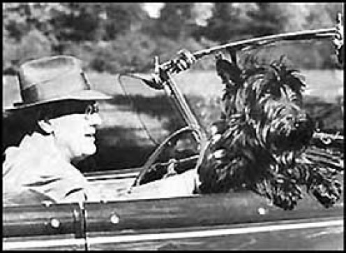 President Roosevelt and Fala