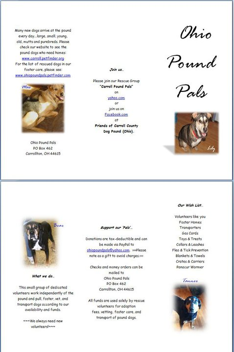Flyer/hand-out for a great rescue in Ohio. Pictures belong to Ohio Pound Pals.