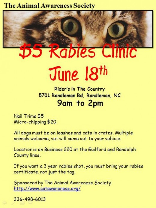Flyer for fundraiser/clinic of great local rescue.