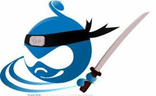 Drupal's logo (ninja version)