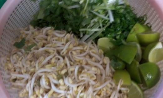 Sprouts, lime, green onion, cilantro