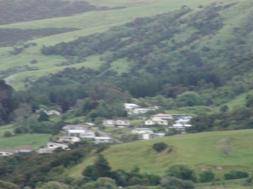 Some of the houses in the village town of Akaroa