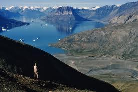 Franz Josef  Glacier found in the Fiords