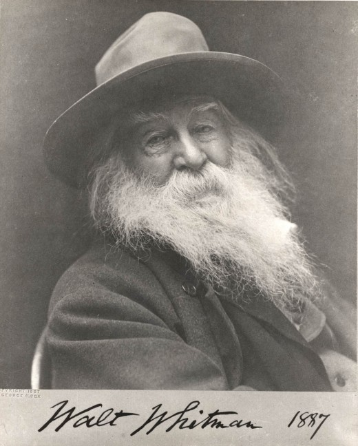 """whalt whitmans out of the cradle The walt whitman poem """"out of the cradle endlessly rocking"""" is looked at by most as just that it is a documentation, of sorts, of his own paradigm shift the ."""